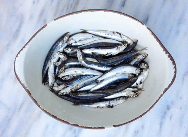 MarinatedAnchovies-620-1