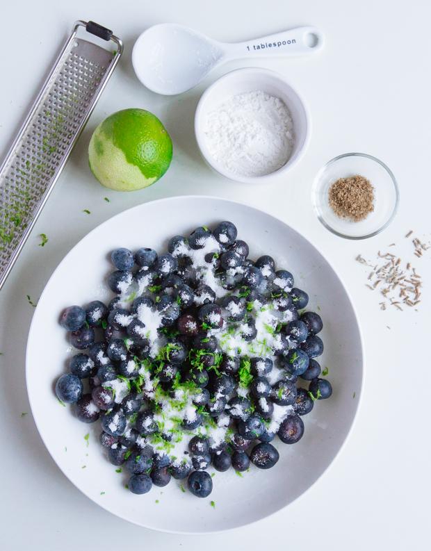 BlueberryGalette-620-2